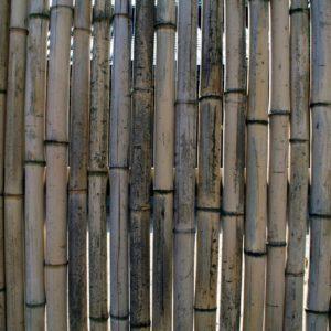 Jehlice výměnné bambusové